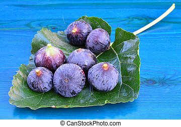 Blue figs on mulberry leaf - Seven blue figs on big mulberry...