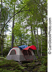 Forest Tent Camping - A wide angle panoramic view of a...