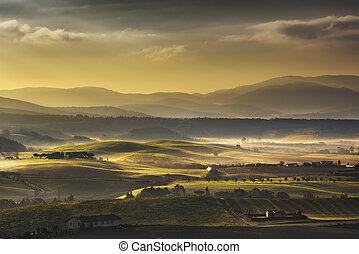 Tuscany Maremma foggy morning, farmlands and green fields....