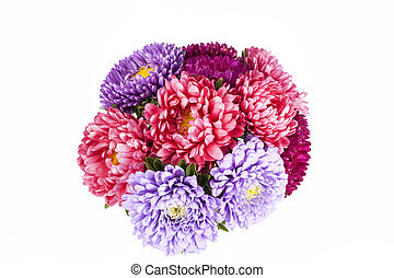 Aster flowers isolated on white background - Bouquet of...