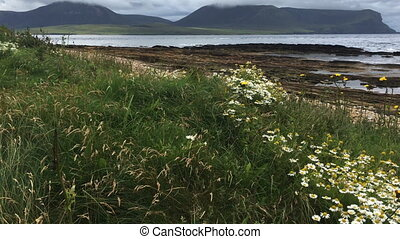 View of Warbeth Beach in Orkney
