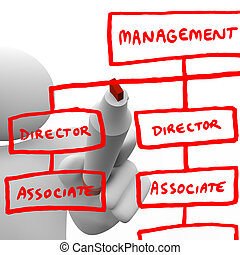 Drawing Organizational Chart on Board - A person draws an...