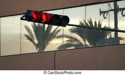 Traffic Light Turns Green Palm Tree - Static evening shot of...