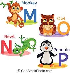 Alphabet kids animals MNOP - MNOP alphabet wildlife: monkey,...