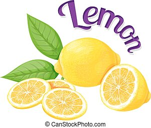 Lemon. Vector illustration on a white background executed in...