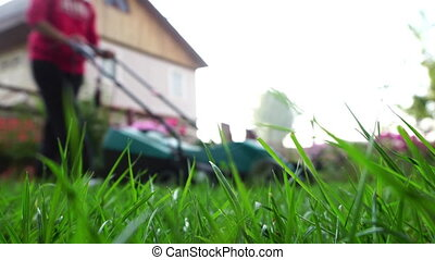 Woman with lawnmower in the backyard - Young woman with a...