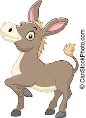Happy donkey isolated on white back