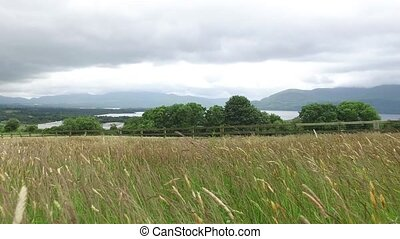 view to lake and farmland at connemara in ireland 54 -...