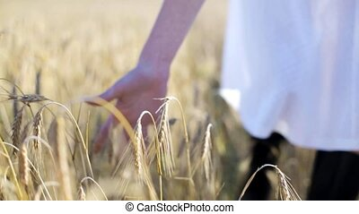 woman in white dress walking along cereal field - country,...