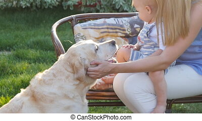 Mother and her son in the park with a golden retriever dog -...