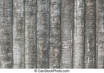 Texture of coconut or palm tree bark for background.