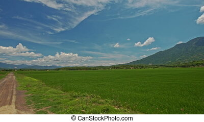 Camera Moves along Road past Rice Fields against Hill Sky -...