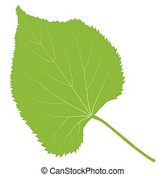 Green leaf ecology background vector environmentally...