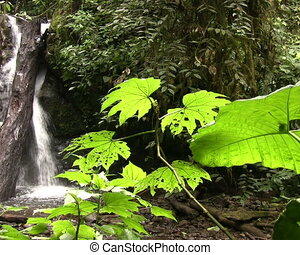 Waterfall in the Nambillo Valley - Near Mindo, Ecuador