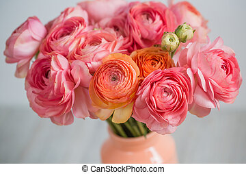 bunch of pale pink ranunculus persian buttercup light...