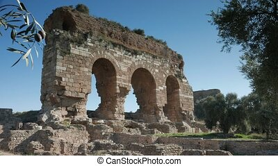 Ancient ruins of Byzantine city named Tralleis with olive...