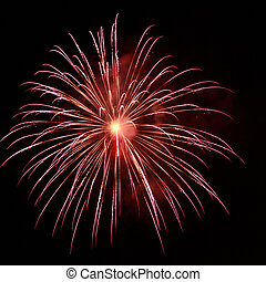 Fireworks - A colorful burst of fireworks in the night sky