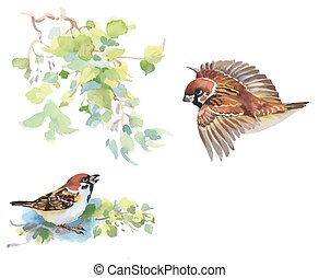 Watercolor colorful Birds and branches with green leaves. -...