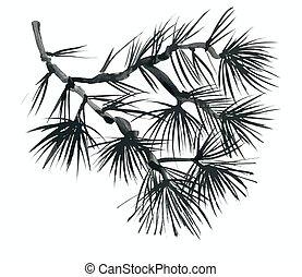 Coniferous branch with pine cones. - Coniferous branch with...