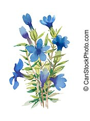 Blue watercolor wildflowers isolated on white background.