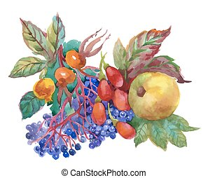 Autumn watercolor illustration with dogwood, apple and other...