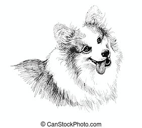 Puppy dog hand drawn illustration sketch - Puppy dog hand...
