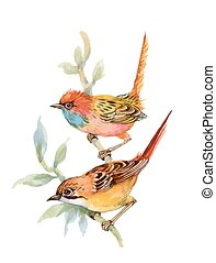 Watercolor forest birds on twig. - Watercolor forest birds...
