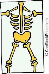 x ray skeleton Roentgen icon isolated on white background in...