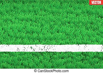 White line on Sport grass field - White line on grass field...