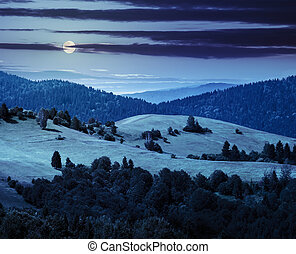 hills with meadow among mountains forest at night - bald...