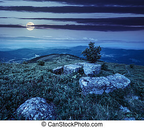 tree and boulders on hillside meadow in mountain at night -...