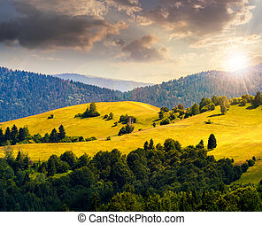 hills with meadow among mountains forest at sunset - bald...