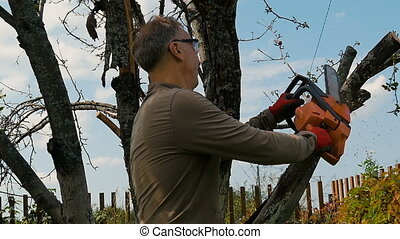 Man cuts off old branches on the tree using a saw.
