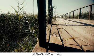 Wooden bridge over the river. Reeds grow around. Dolly. Close up