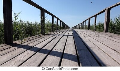 Wooden bridge with railings. Dolly shot - Wooden bridge with...