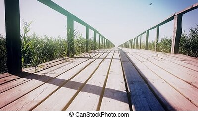 Wooden pier with reed. Dolly shot. Close up - Bridge through...