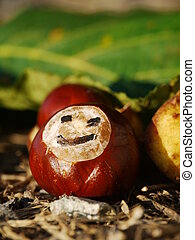 horse chestnut autumn fall smiley - a portrait of a group of...