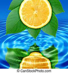 Reflect lemon-slice and leaf in water - Abstract background...