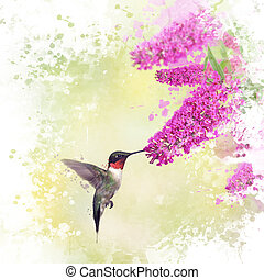 Hummingbird and Butterfly bush watercolor - Digital painting...