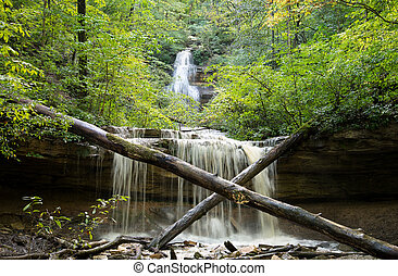 Tioga Falls is 130 feet tall and one of the tallest in...