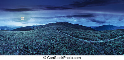 path among the grass on mountain top at night - panoramic...