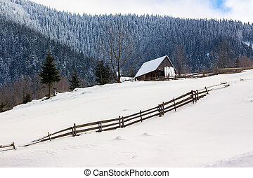 woodshed on the hillside in winter mountains - woodshed...