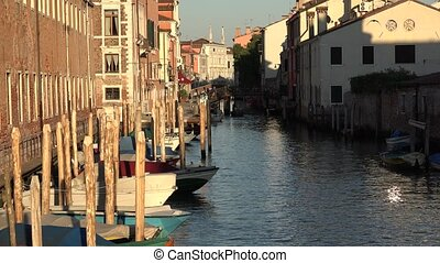Buildings And Boats At Venice Canal