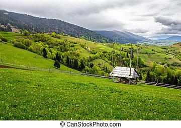 storage of firewood on hillside meadow in mountain