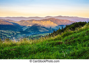 village on hillside meadow with forest in mountain - village...