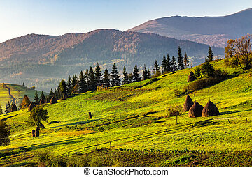 agricultural field with haystack on hillside at sunrise