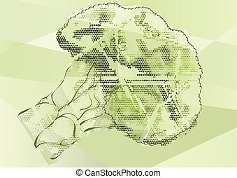 broccoli abstract illustration. Healthy ecological green...