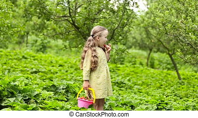 little girl eating a strawberry