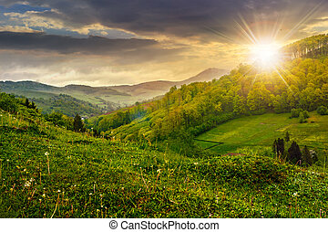hillside near the rural area in fog at sunset - meadow on a...