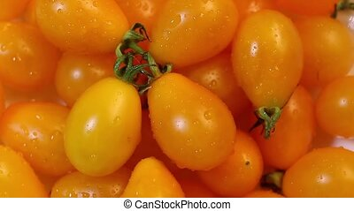 Bright orange tomatoes rotating. - Bright orange tomatoe...